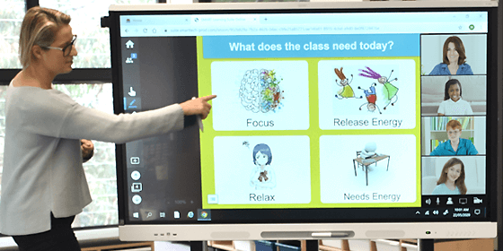 Smart Learning Suite - conferinta video SMART Board
